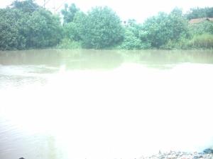 aliran-sungai-brantas